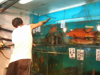 Photo of fish being chosen for supper